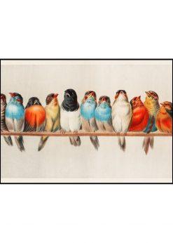 Birds In a Row Vintage