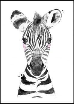 Cute Baby Zebra Painting