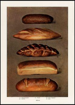 Bread Vintage