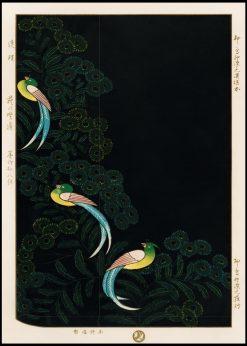 Kimono Lithograph Illustration