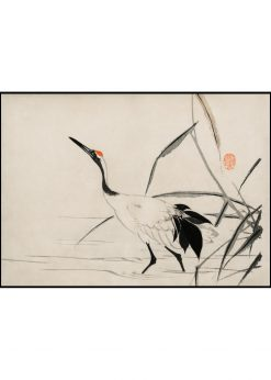 Japanese Crane in Water Illustration