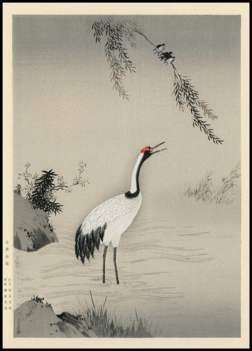 Portrait of a Japanese Crane Illustration