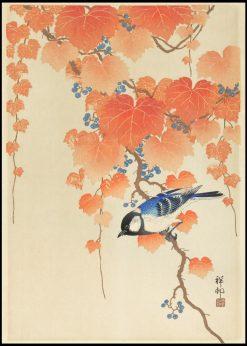 Great Tit Bird on Paulownia Branch Illustration