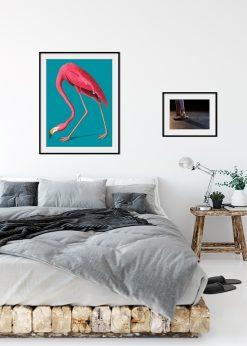 Vintage Illustration of Pink Flamingo nr.1