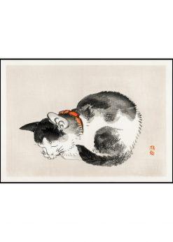 Sleeping Cat Illustration