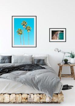 Palmtrees and Blue Skies