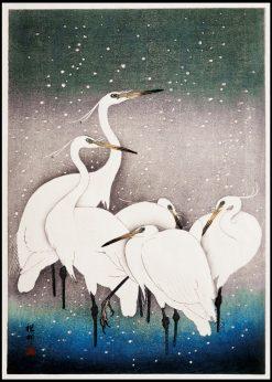 Group of Egrets Vintage