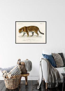 """Jaguar """"Le Jaguar"""""""