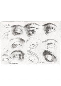 Studie of Eyes