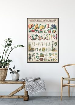 School and Family Charts nr.1
