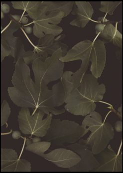 Botanical Night by Florent Bodart