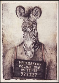 Zebra by Mike Koubou