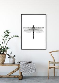 Dragonfly by Sanna Wieslander