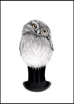 Sharp Eyed Owen by Sanna Wieslander