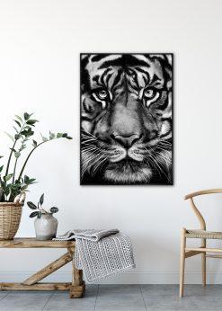 Tiger by Gabriella Roberg